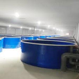 Cung cấp bể composite nuôi lươn ở Hải Phòng