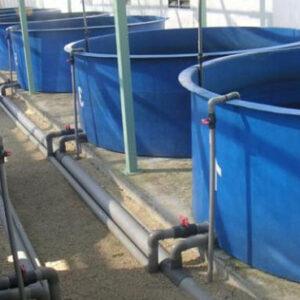Địa chỉ cung cấp bể composite nuôi cá ở Hải Phòng